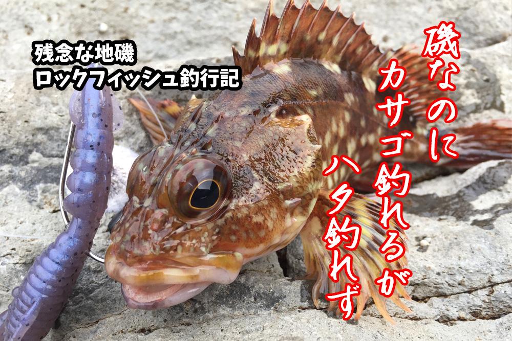 京都府での地磯ロックフィッシュゲームもカサゴのみの不発釣行記録
