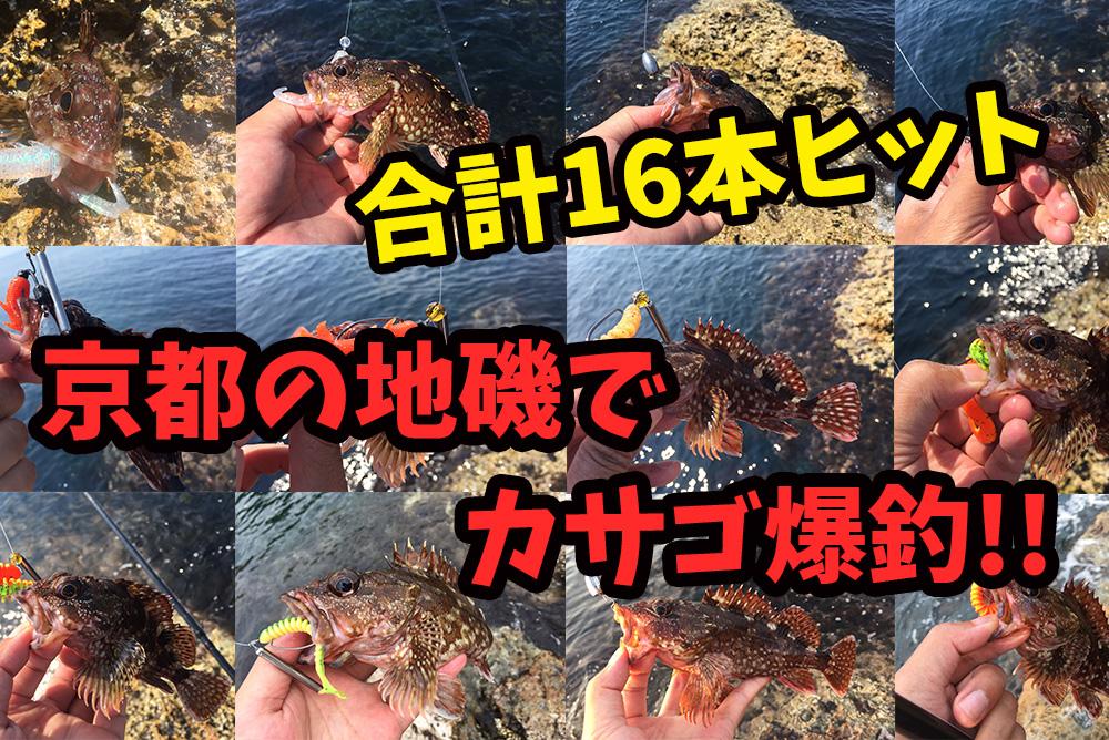 京都(日本海)の地磯でカサゴ(ガシラ)爆釣!ロックフィッシュ釣行記録
