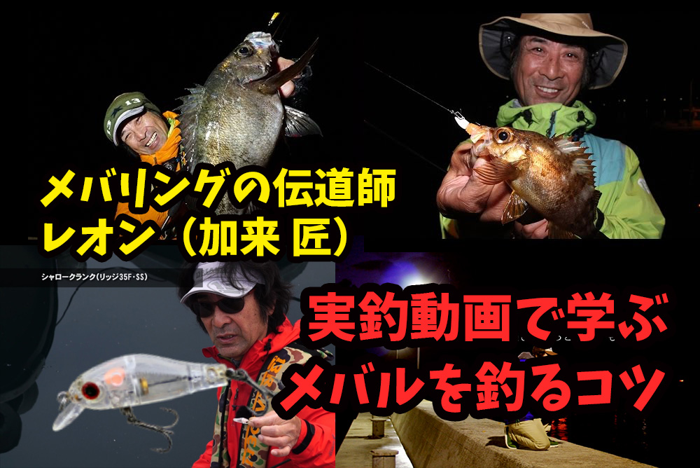 メバリング初心者必見!レオン(加来 匠)の動画から学ぶメバルを釣るコツ
