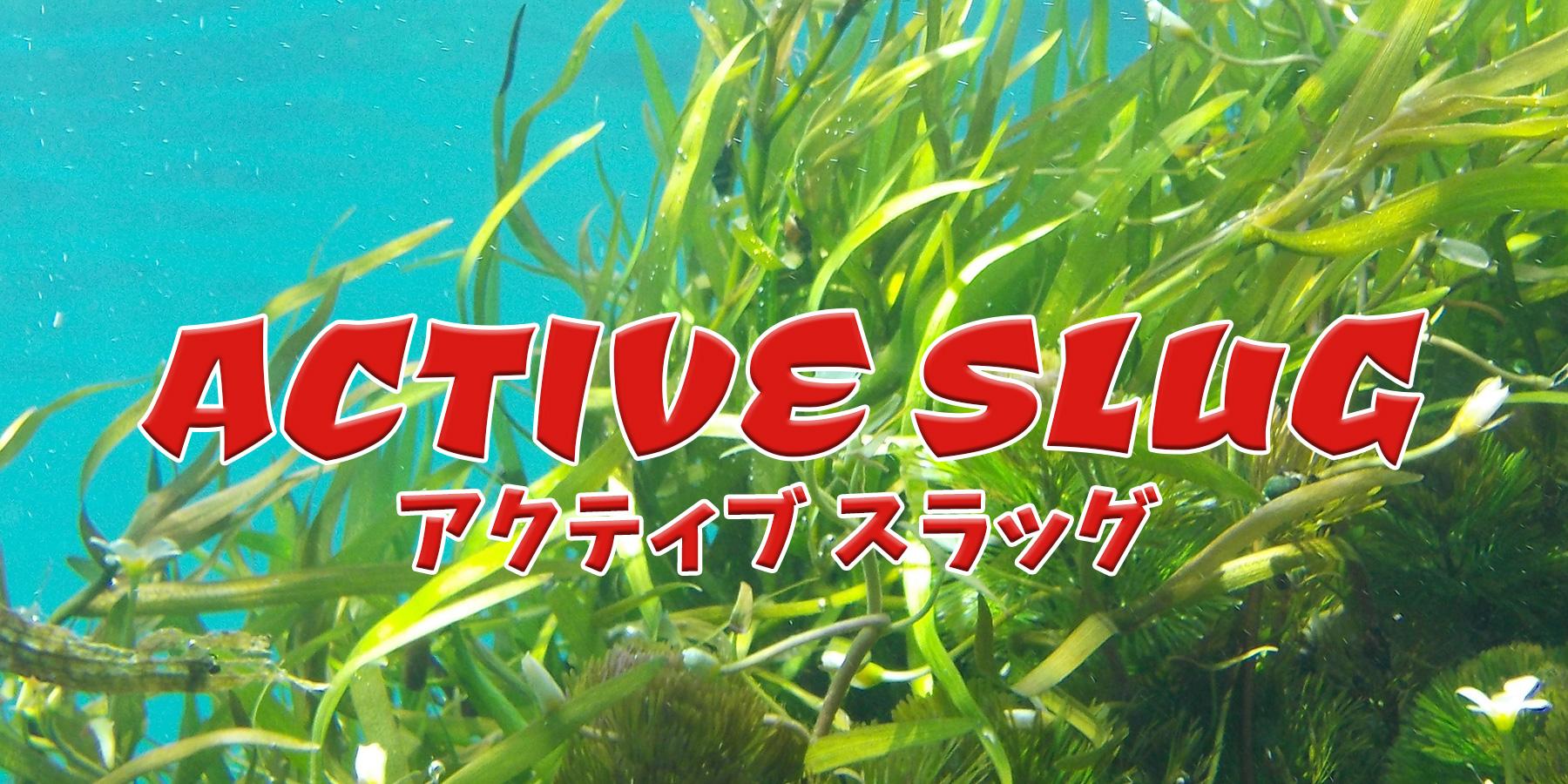 アクティブ スラッグ(ACTIVE SLUG)